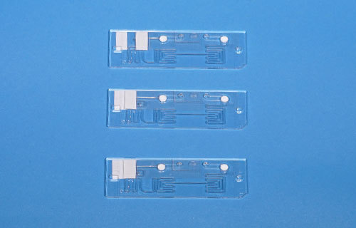 測定チップの写真