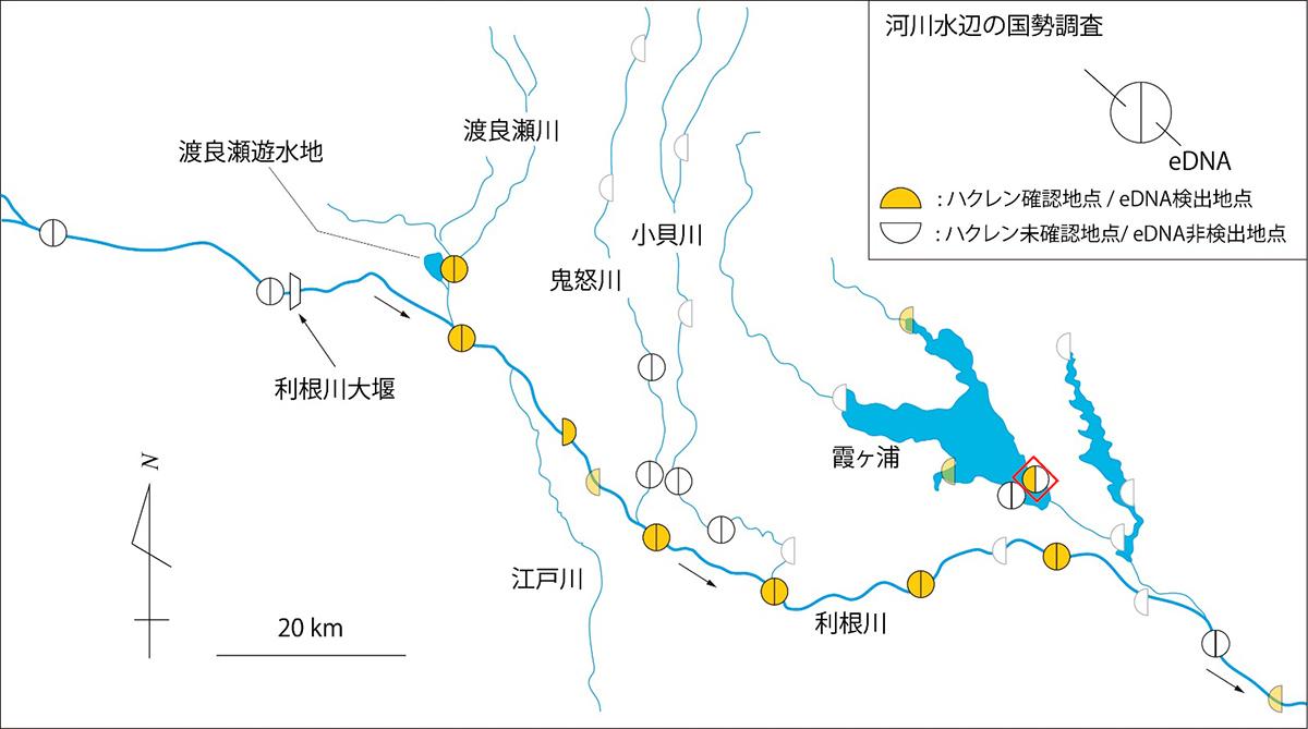 河川水辺の国勢調査